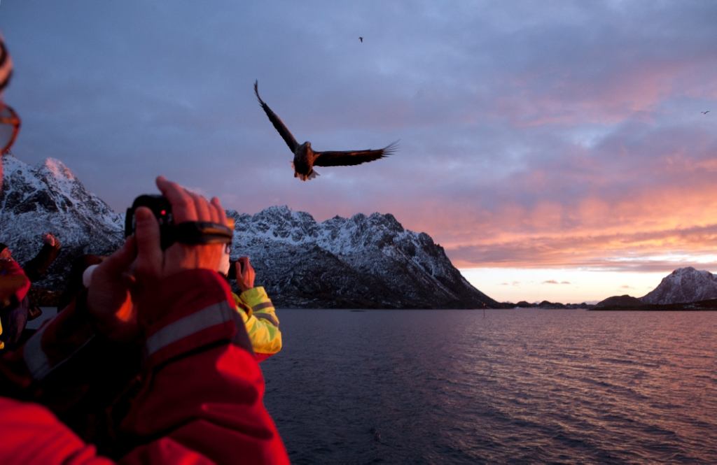 Aktivreisen: trollfjord johnny mazzilli nordnorge com