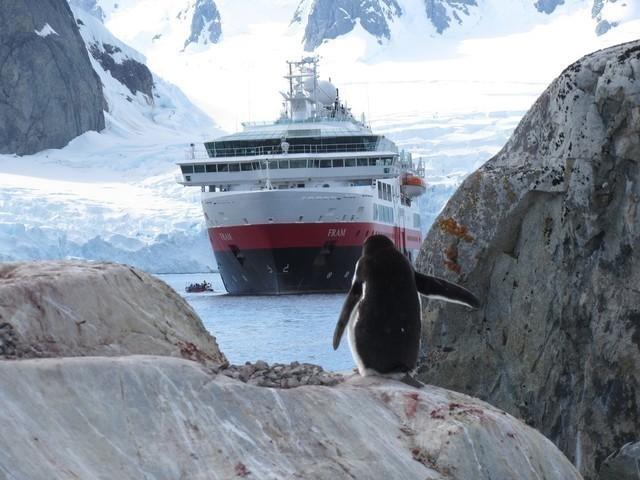 Hurtigruten: antarktis heidi kumuduni dahl hurtigruten