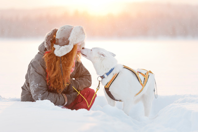 Winter: dog kiss anna oehlund imagebank sweden se