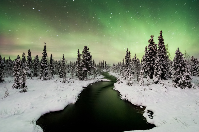 Winter: nordlicht asaf kliger imagebank