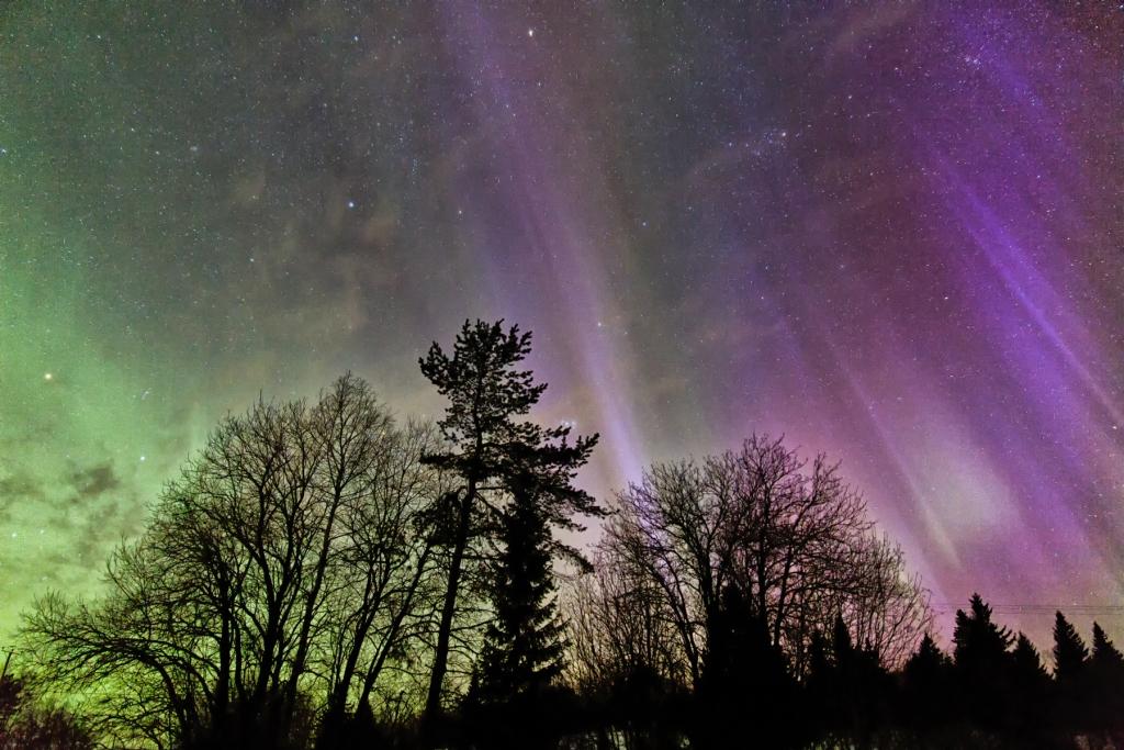 Winter: nordlichter vuokattisafaris
