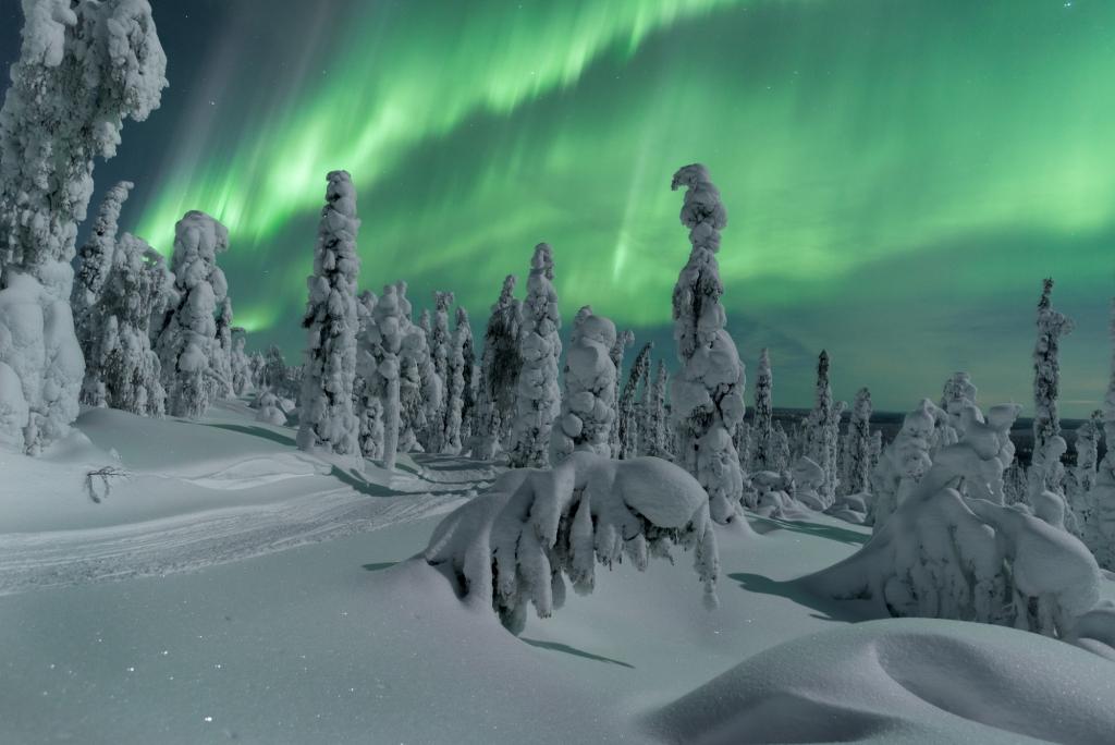 Nordlichter: nordlichter xwander