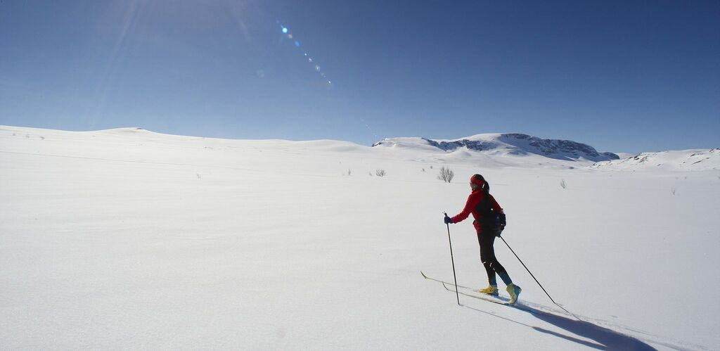 Winter: skiing in geilo visitnorway com