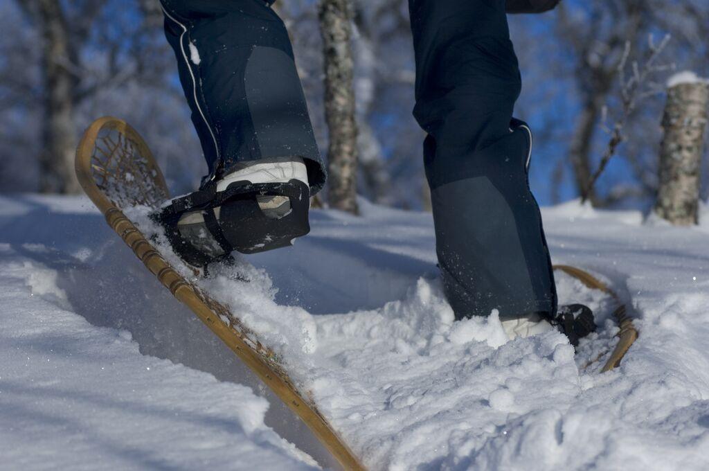 Nordlichter: snowshoeing terje rakke visitnorway com