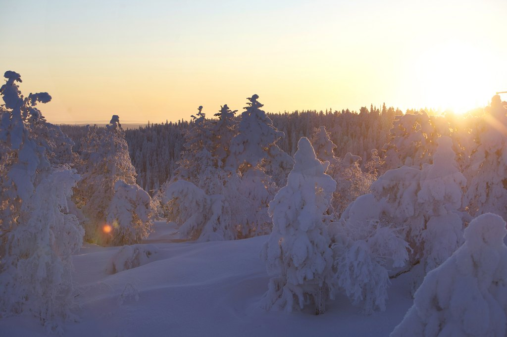 Winter: winterlandschaft vuokatti