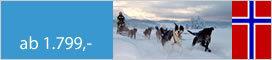 Winter   Lyngenalpen - ein Nordlichtabenteuer