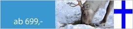 Winter Stippvisite Finnisch Lappland